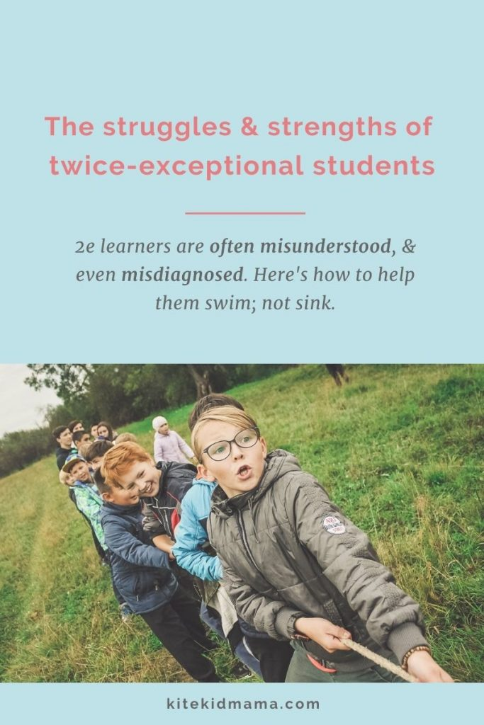 Twice exceptional kids are often misunderstood